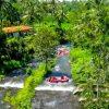 Ayung Rafting | Wisata Arum Jeram Bali Seru Pacu Adrenalin