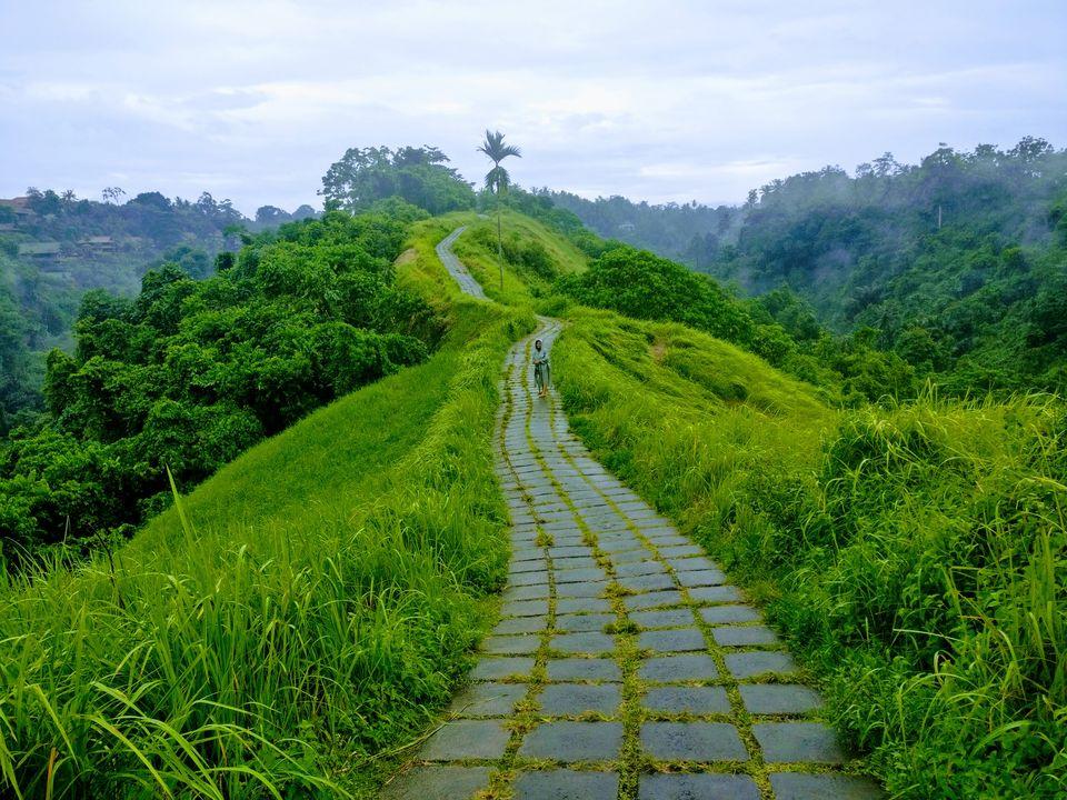 Campuhan Ridge Walk - 9 Tempat Wisata Bali Murah Backpacker yang Instagramable