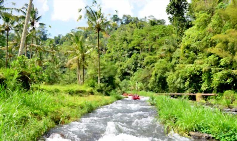 arum jeram bali - Ayung Rafting | Wisata Arum Jeram Bali Seru Pacu Adrenalin