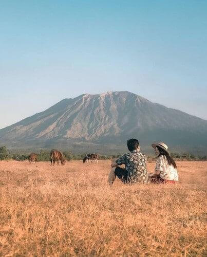 padang rumput savana tianyar karangasem re - Savana Tianyar Karangasem, Wisata Eksotis Mirip Padang Rumput Afrika