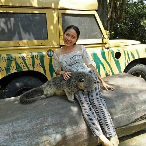 tempat wisata taman safari bali - Bali Safari Marine Park | Info Harga Tiket Masuk Terbaru Tahun Ini